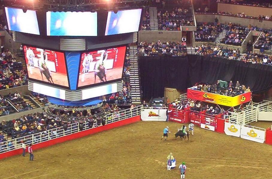 bullridng at the san antonio rodeo