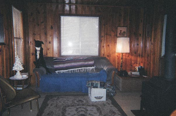 colorado cabin interior