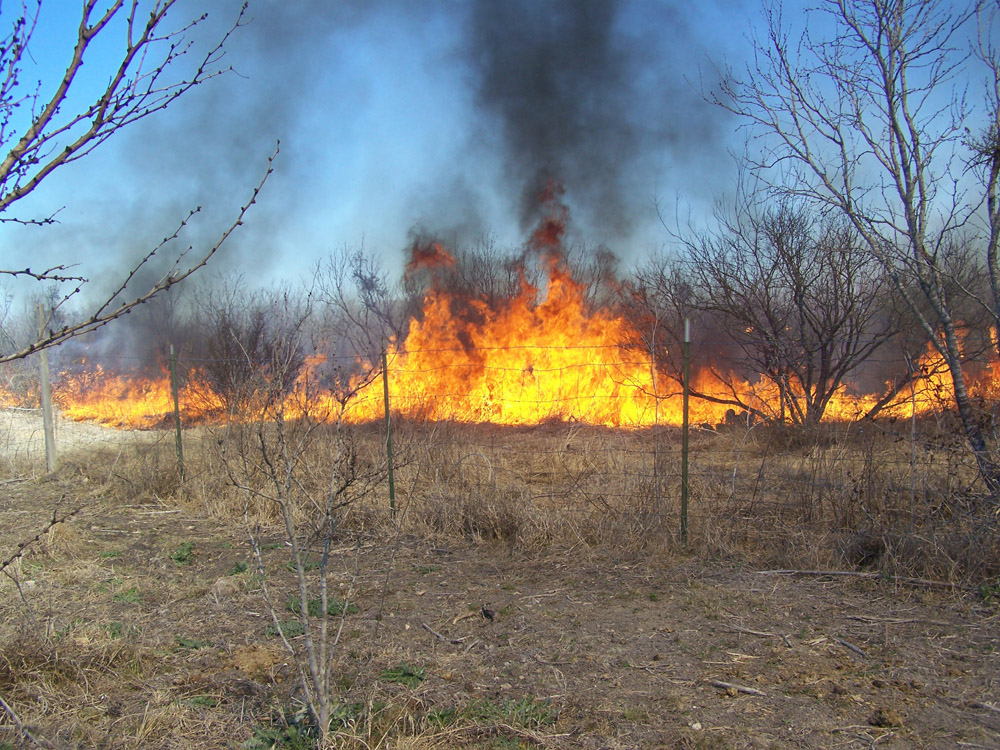flames pick up during grassfire