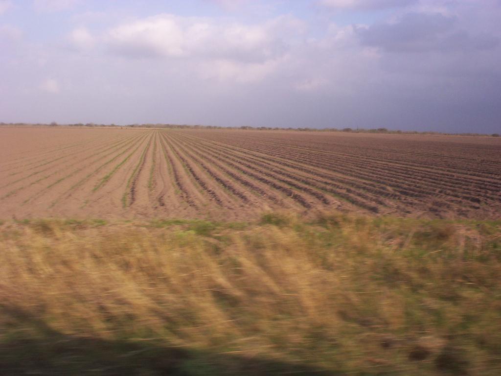 Matamoros Tamaulipas Mexico   Rancho Capote   Endless Land