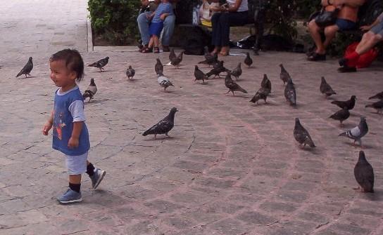 matamoros mexico   kid and birds