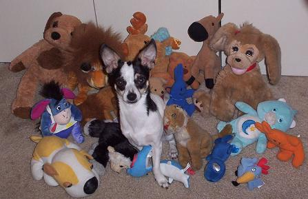 toby and the toys
