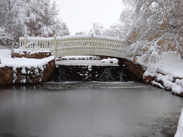 bridge over frozen pond