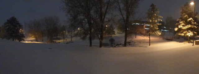 panoramic snowfall denver colorado
