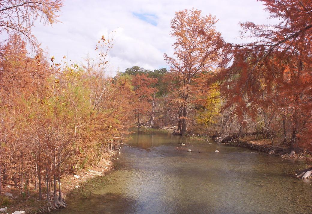medina river in late november