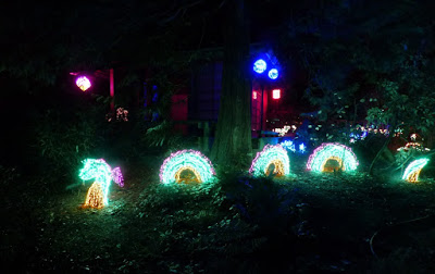 christmas lights dragon