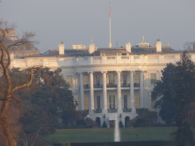 the white house4